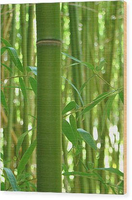 Bamboo Wood Print by Rhianna Wurman