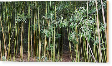 Bamboo Wind Chimes  Waimoku Falls Trail  Hana  Maui Hawaii Wood Print by Michael Bessler