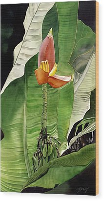 Wood Print featuring the painting Banana Blossom by Alfred Ng