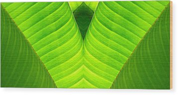 Banana Leaf Abstract 2 Wood Print