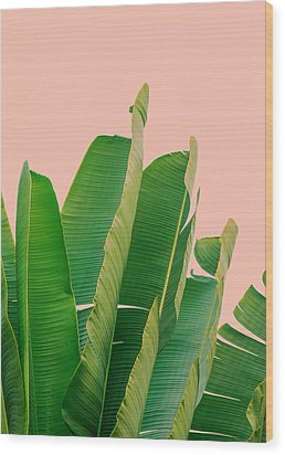 Banana Leaves Wood Print by Rafael Farias