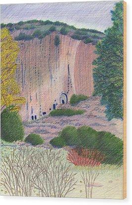 Bandelier 2004 Wood Print by Harriet Emerson