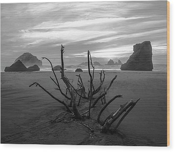 Bandon Beach Tree Wood Print