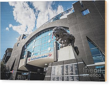 Bank Of America Stadium Carolina Panthers Photo Wood Print by Paul Velgos