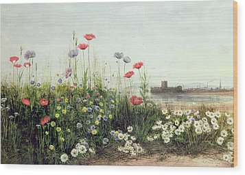 Bank Of Summer Flowers Wood Print by Andrew Nicholl