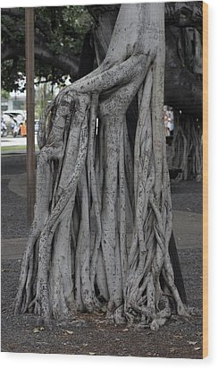 Banyan Tree, Maui Wood Print