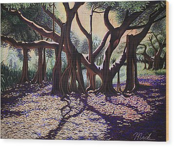 Banyan Tree On Old Cutler Road Wood Print by Stephen Mack