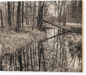 Bare Bones Wood Print by Betsy Zimmerli