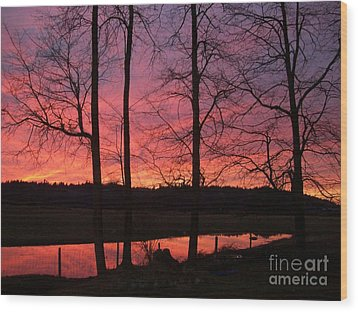 Wood Print featuring the photograph Bare Branches II by Cody Williamson