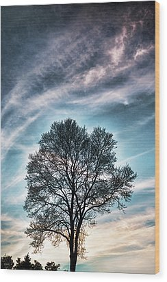 Bare Sunset Wood Print