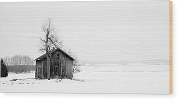 Bare Tree And Barn Wood Print by Levin Rodriguez
