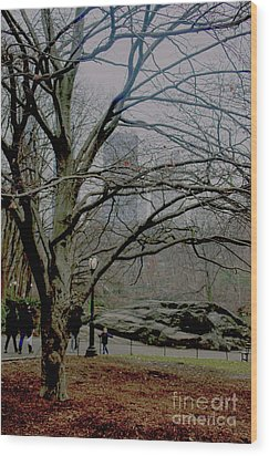 Bare Tree On Walking Path Wood Print by Sandy Moulder