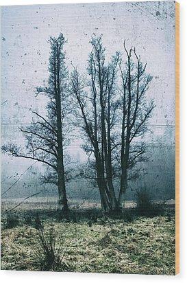 Bare Winter Trees Wood Print