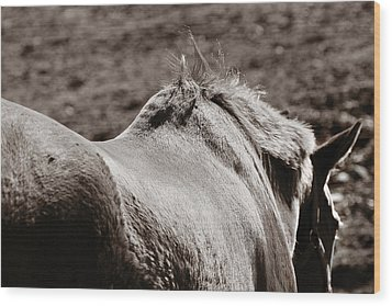 Wood Print featuring the photograph Bareback by Angela Rath