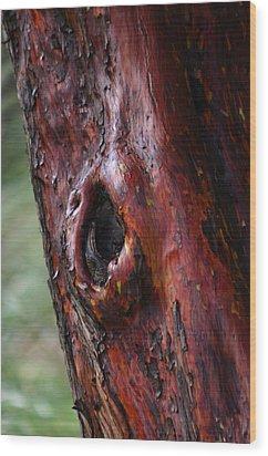 Bark Wood Print by Martina Fagan