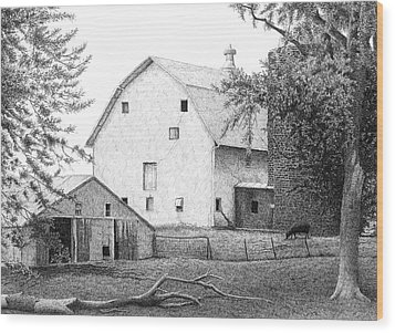 Barn 23 Wood Print by Joel Lueck