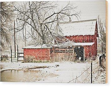Barn And Pond Wood Print by Marilyn Hunt
