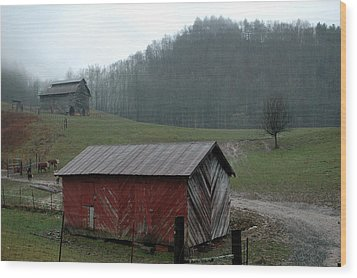 Barn At Stecoah Wood Print by Kathy Schumann