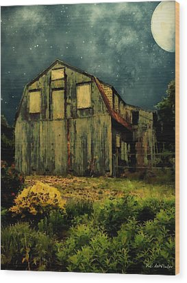 Barn By The Beach Wood Print by RC deWinter