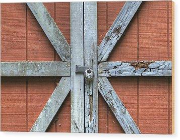Barn Door 1 Wood Print by Dustin K Ryan