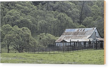 Barn In The Meadow Wood Print