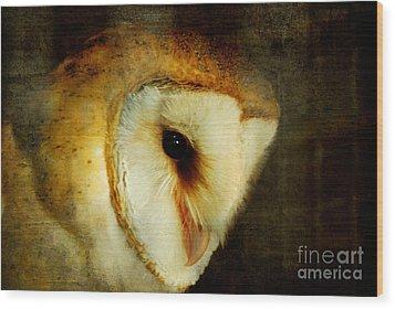 Barn Owl Wood Print by Lois Bryan