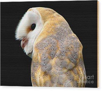 Barn Owl Wood Print by Rose Santuci-Sofranko