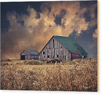 Barn Surrounded With Beauty Wood Print by Kathy M Krause