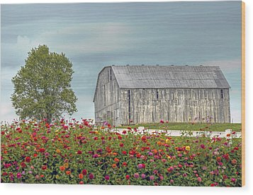 Barn With Charm Wood Print