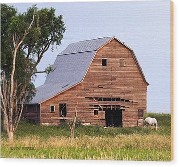 Wood Print featuring the photograph Barn With White Horse by Don Durfee