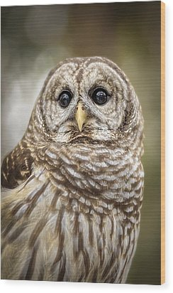 Wood Print featuring the photograph Hoot by Steven Sparks