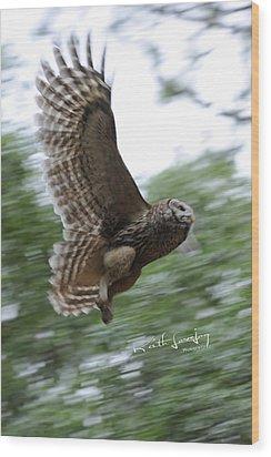 Barred Owl Taking Flight Wood Print