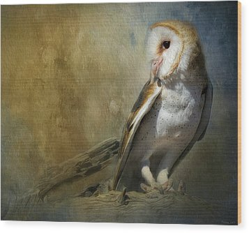 Bashful Barn Owl Wood Print