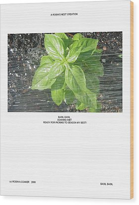 Wood Print featuring the photograph Basil Basil by Robin Coaker
