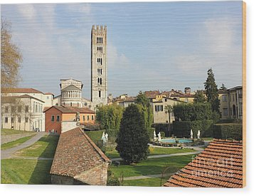 Basilica Di San Frediano With Palazzo Pfanner Gardens Wood Print by Kiril Stanchev
