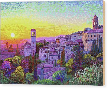 Basilica Of St. Francis Of Assisi Wood Print