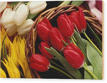 Basket With Tulips Wood Print by Garry Gay