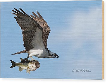 Wood Print featuring the photograph Bass Master 4 by Don Durfee