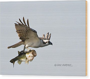 Wood Print featuring the photograph Bassmaster 2 by Don Durfee