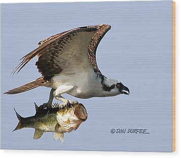 Wood Print featuring the photograph Bassmaster 3 by Don Durfee