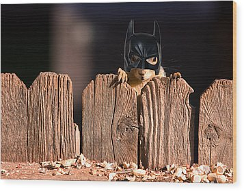 Bat Squirrel  The Cape Crusader Known For Putting Away Nuts.  Wood Print by James BO  Insogna