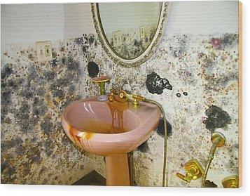 Bathroom Mold Wood Print by William Furguson