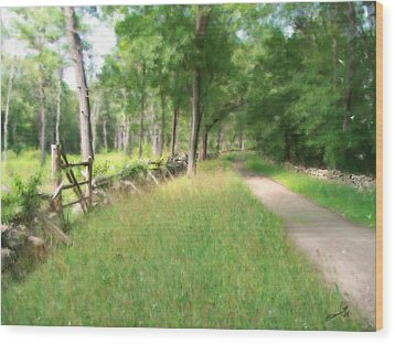 Battle Trail Wood Print by Eddie Durrett