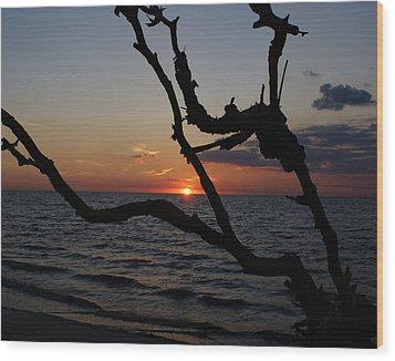 Bay Dreams Wood Print by Debbie May