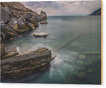 Bay Of The Gulf Of Poets Wood Print