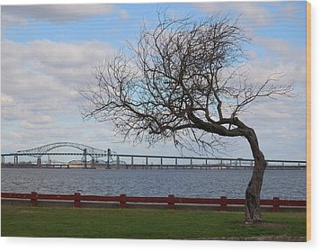Wood Print featuring the photograph Bayonne by Steven Richman