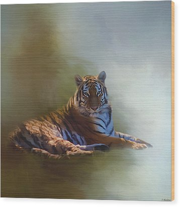 Be Calm In Your Heart - Tiger Art Wood Print by Jordan Blackstone