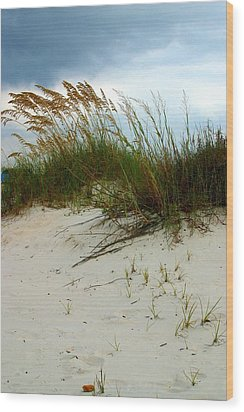 Beach   Grass   And  Sky Wood Print