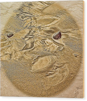 Wood Print featuring the photograph Beach Abstract by Dale Stillman
