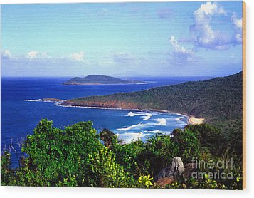 Beach And Cayo Norte From Mount Resaca Wood Print by Thomas R Fletcher